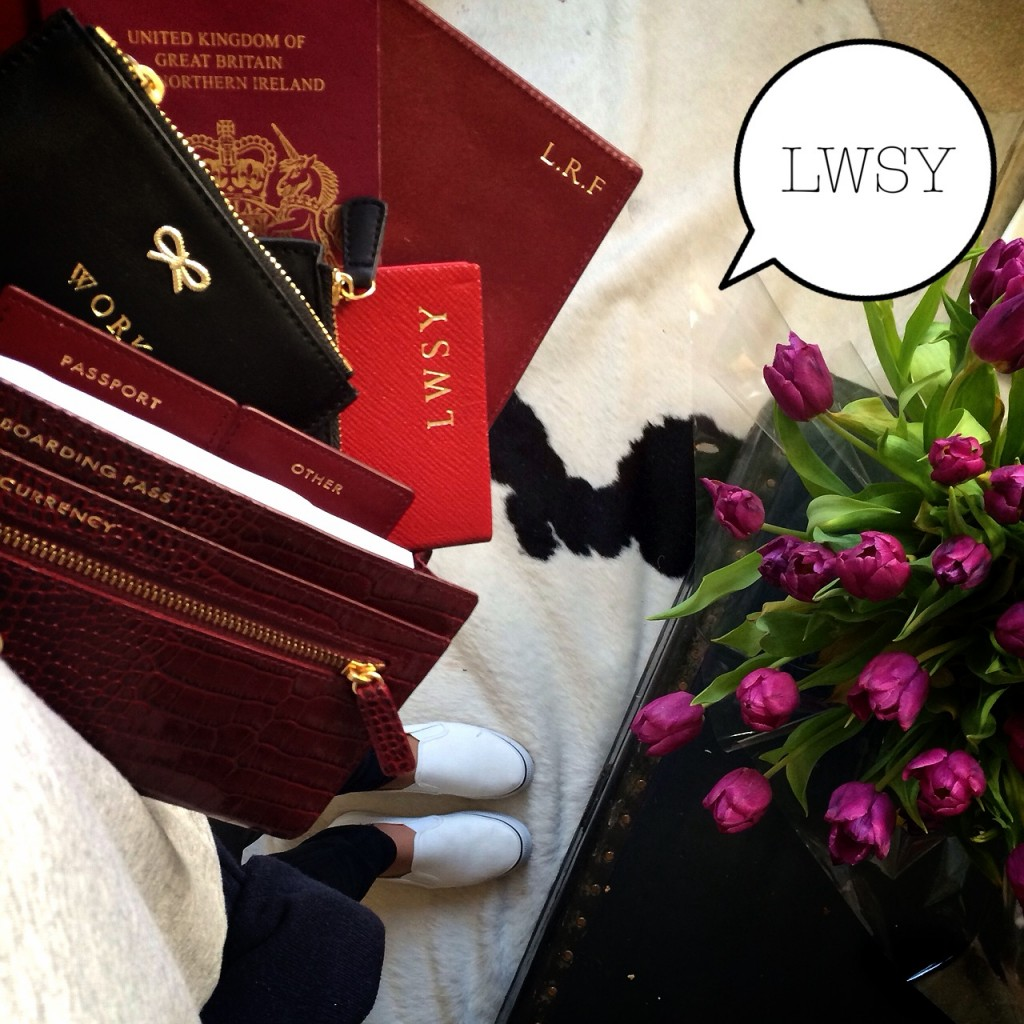 LWSY FDM