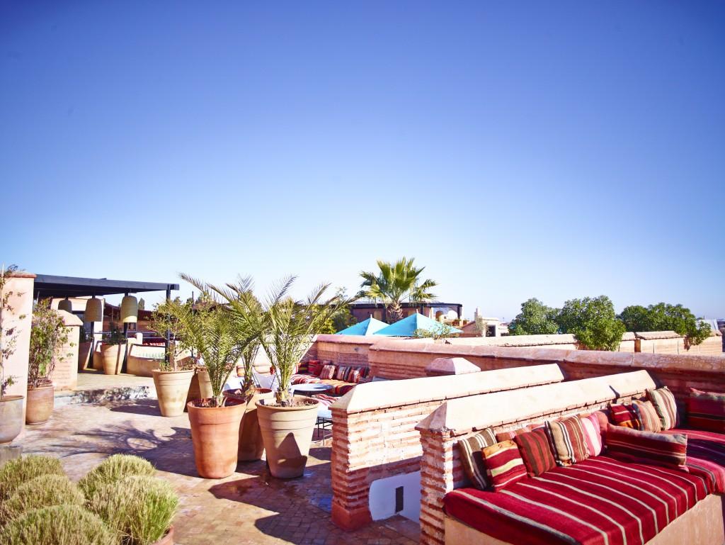 Roof terrace credit David Loftus